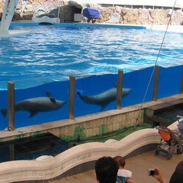 بکارگیری دوربین های تحت شبکه ژئوویژن در پارک دلفین کیش